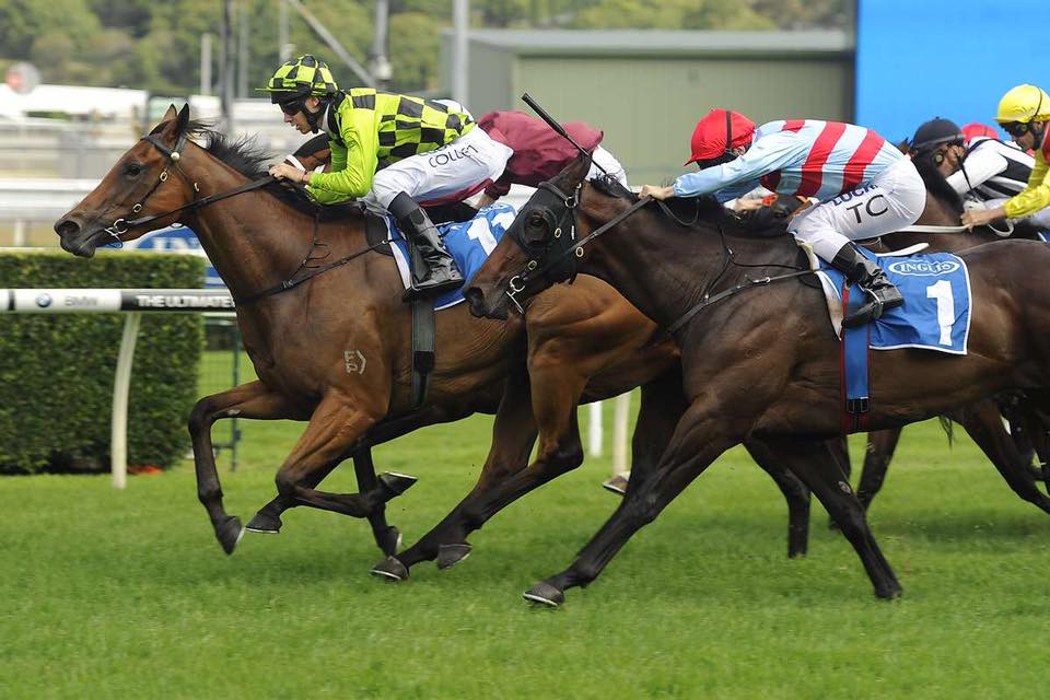 Lady Sniper wins Listed Gosford Guineas