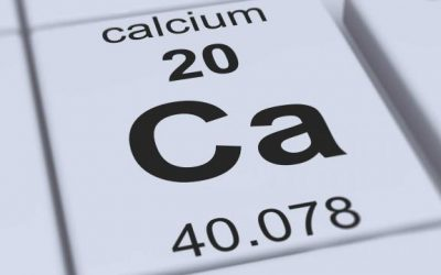 Calcium is an important electrolyte