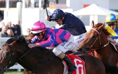 Tony Nicconi Wins Three Vain Stakes (G3)